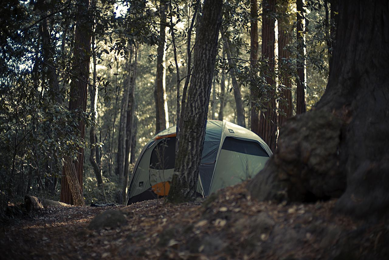 What to look for in the perfect campsite