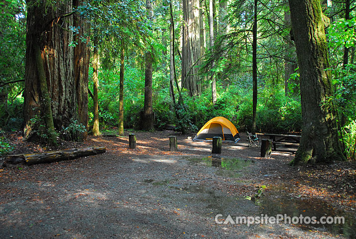 Jedediah Smith Campground in Redwoods State Park in California