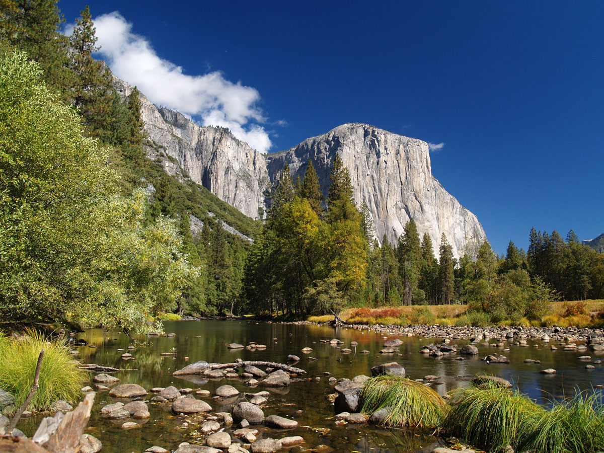 Photo Source: yosemitepinesrv.com
