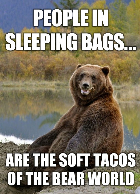 RV joke - Bear - soft tacos