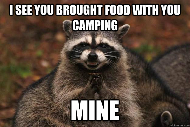 RV Joke - Raccoon stealing food