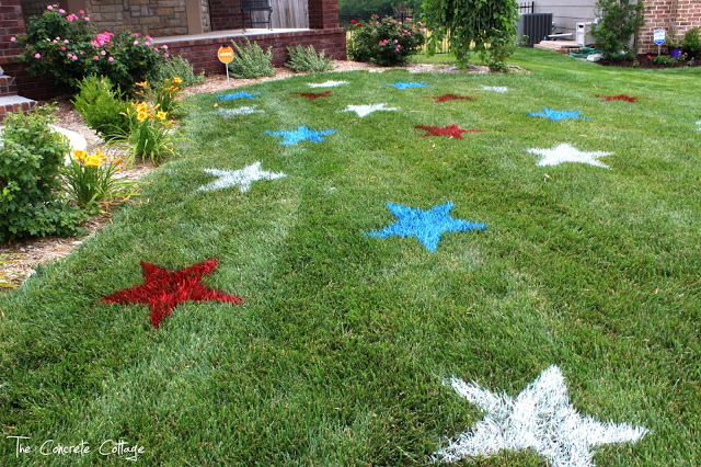 PaintedLawnStars