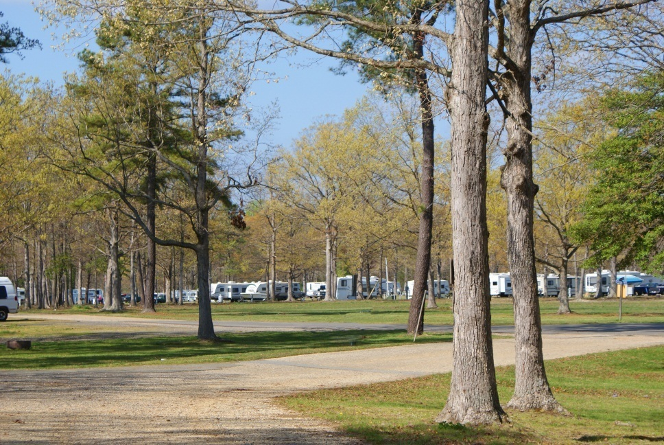 take-it-easy-campground-callaway-md-0