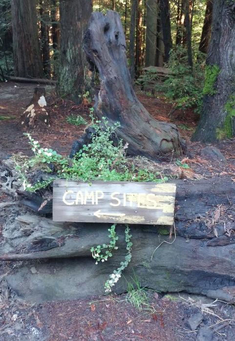 Wildwood Campground & RV Park - 10 Photos, 3 Reviews ...